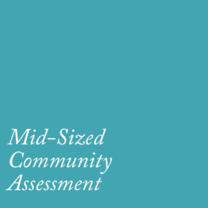 mid-sized